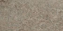 Agrob Buchtal Quarzit sepia bruin 25x50cm 8453-342550HK